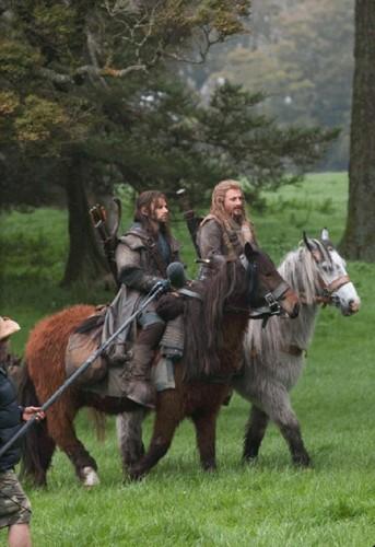 Fili and Kili Riding Ponies