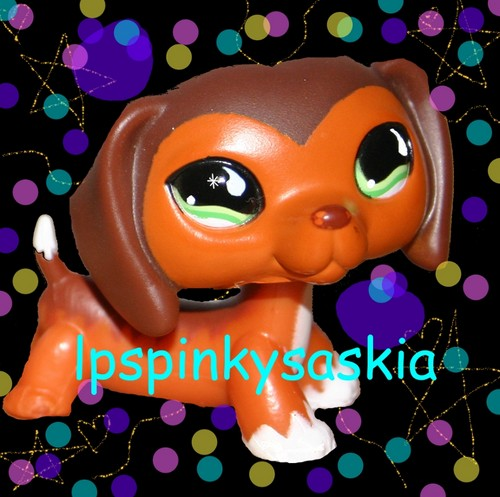 The LPS Club wallpaper called For lpspinkysaskia