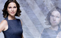 Gillian Foster - lie-to-me wallpaper