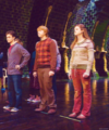 Ginny, rona and Harry - ginevra-ginny-weasley photo