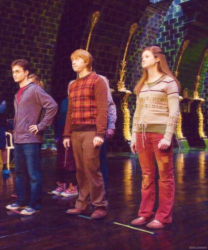Ginny, rona and Harry