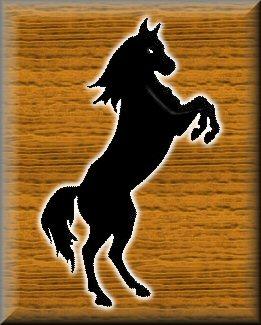 Gizbins' horse, Fury