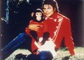 MJ and a monkey - michael-jackson photo