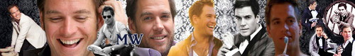 Michael Weatherly Banner