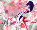 Musa Sirenix winx wallpaper - the-winx-club wallpaper