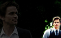 Neal - white-collar wallpaper