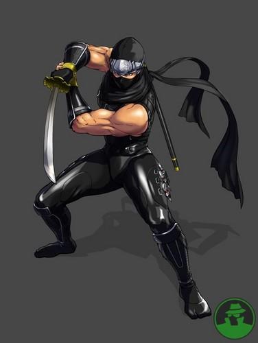 Ryu Hayabusa (NG: DS)