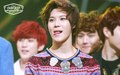 SHINee Taeminn  - shinee-taemin photo