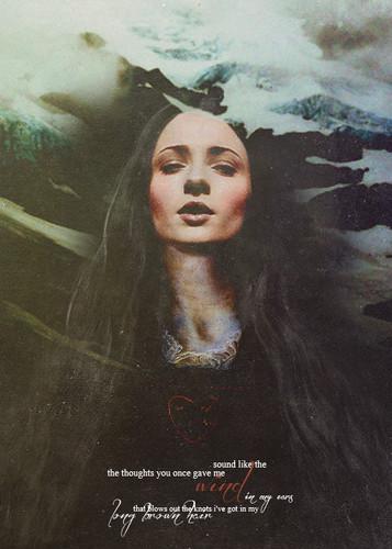 Sansa Stark / Alayne Stone