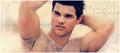 Taylor Lautner - taylor-lautner fan art
