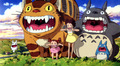 Totoro - my-neighbor-totoro photo