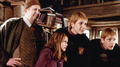 Weasley - the-weasley-family photo