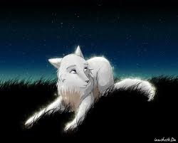 Wolfs pics and one of my furry drawings