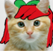 apple bloom as a real cat - my-little-pony-friendship-is-magic icon