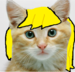 derpy as a real cat - my-little-pony-friendship-is-magic icon