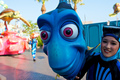 finding nemo - finding-nemo photo