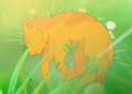 fireheart - warrior-cats-club photo