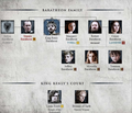 House Baratheon - game-of-thrones photo