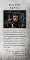 Robb Stark - game-of-thrones photo