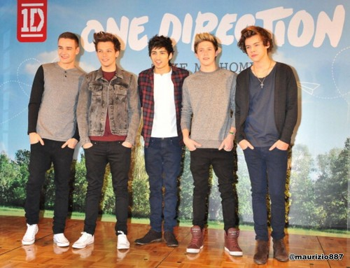 one direction Japan 2013