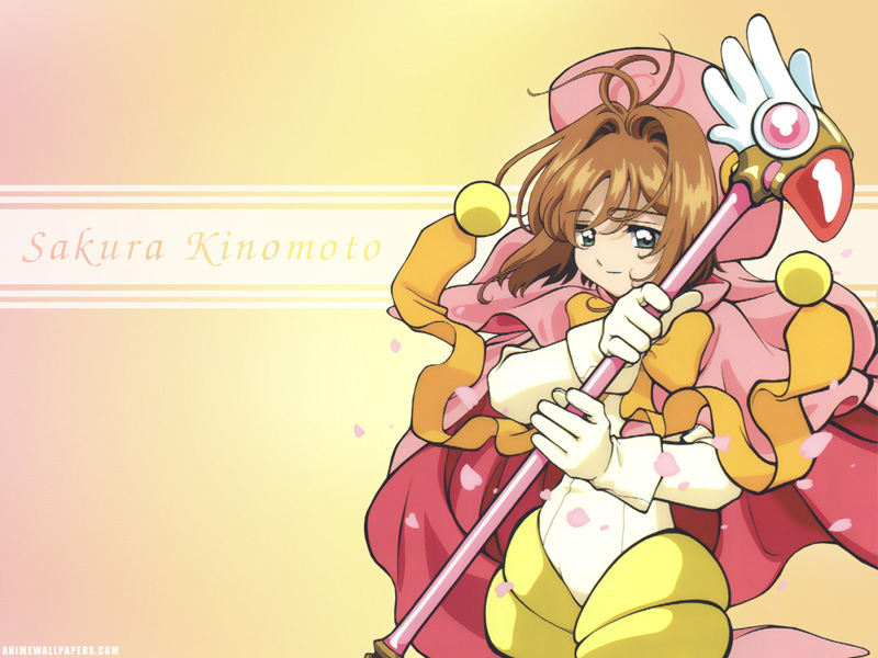 sakura پیپر وال