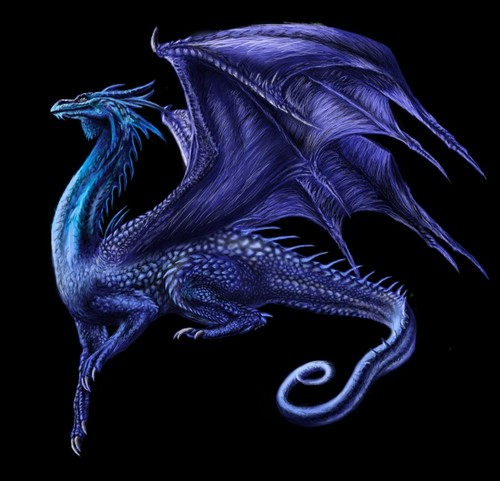 Dragons wallpaper probably with an octopus and an embryonic cell called saphira
