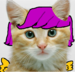 scootalo as a real cat - my-little-pony-friendship-is-magic icon