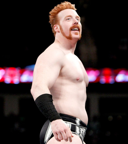 WWE wallpaper possibly with a hunk called sheamus