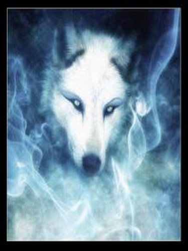 serigala, wolf spirit