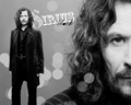♥ - sirius-black photo