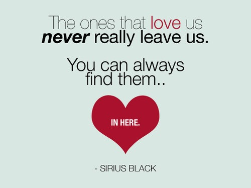 Sirius Black wallpaper probably with a venn diagram called ♥