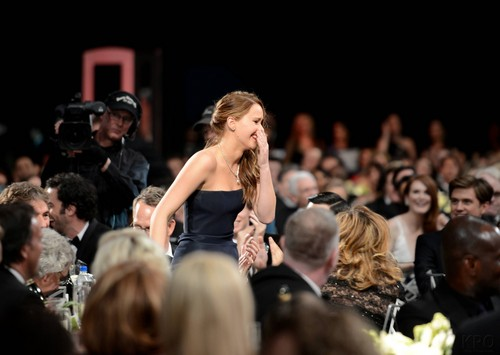 19TH ANNUAL SCREEN ACTORS GUILD AWARDS - BACKSTAGE AND AUDIENCE [HQ]