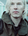 Benedict Cumberbatch as Julian Assange - benedict-cumberbatch photo