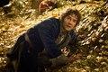 Bilbo in Lonely Mountain