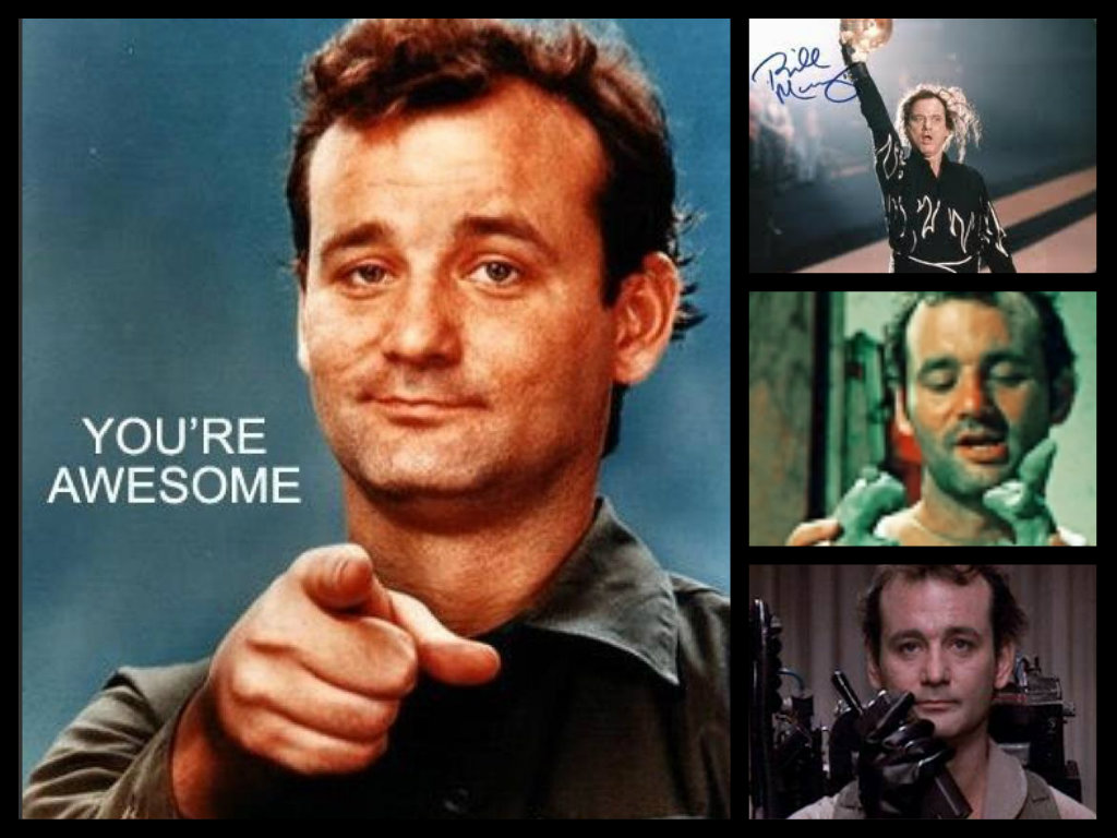 bill murray hd wallpaper - photo #38