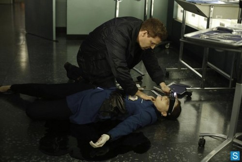 Bones 8.15 'The Shot in the Dark' Promotional photos