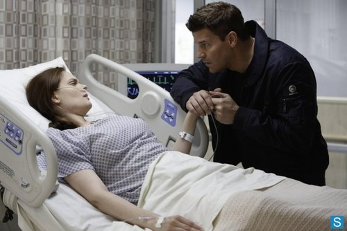 bones 8.15 'The Shot in the Dark' Promotional fotos