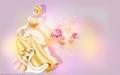 disney-princess - Cinderella ~ ♥ wallpaper