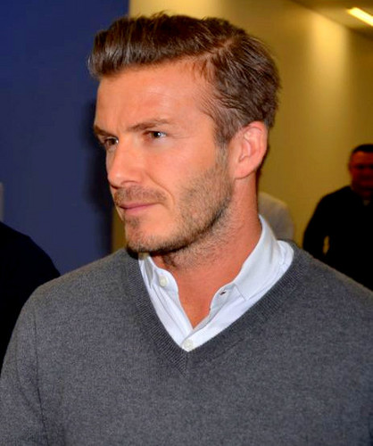 david beckham my side pdf free download