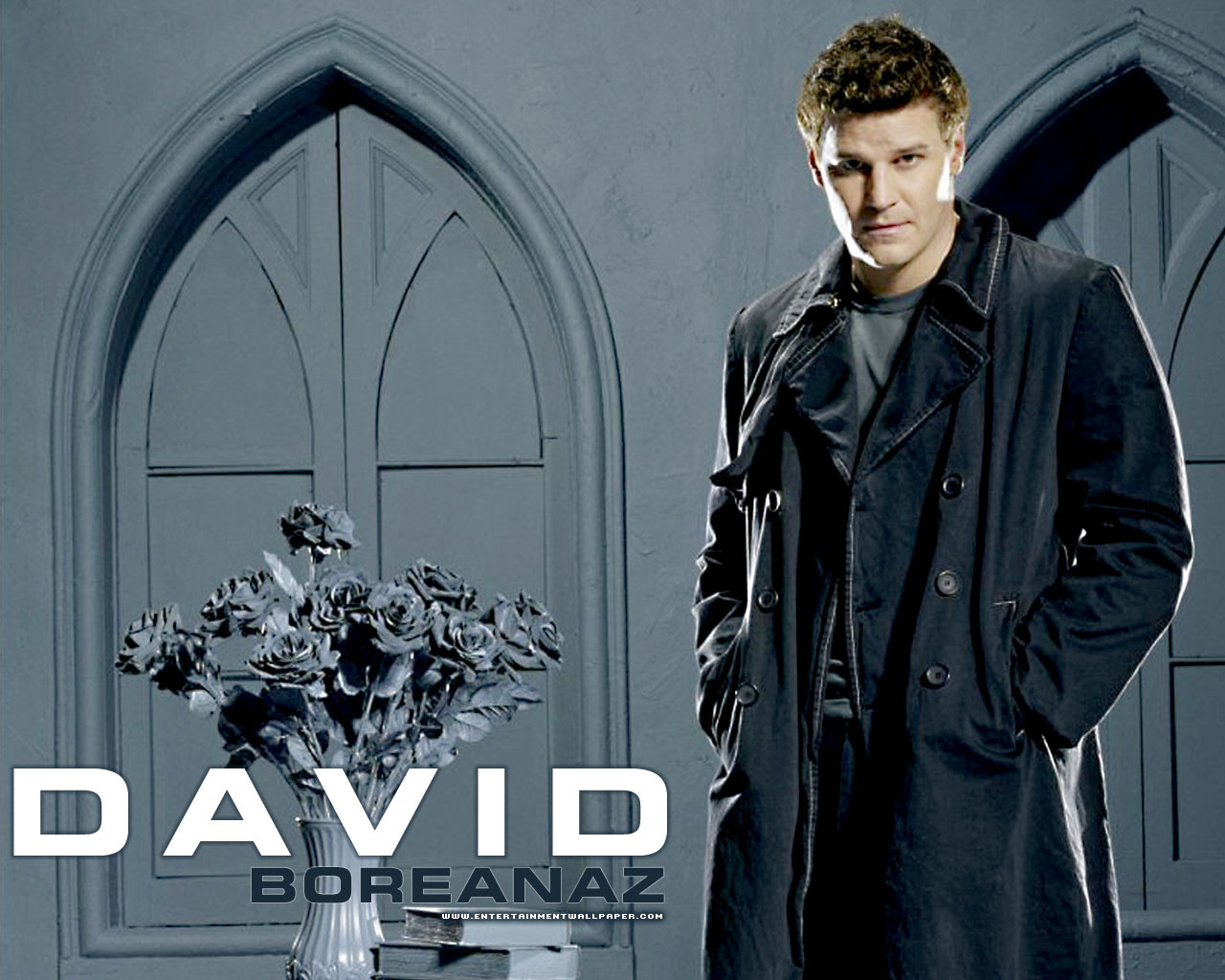 David Boreanaz Wallpapers