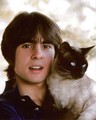 Davy Jones - 1960s-music photo