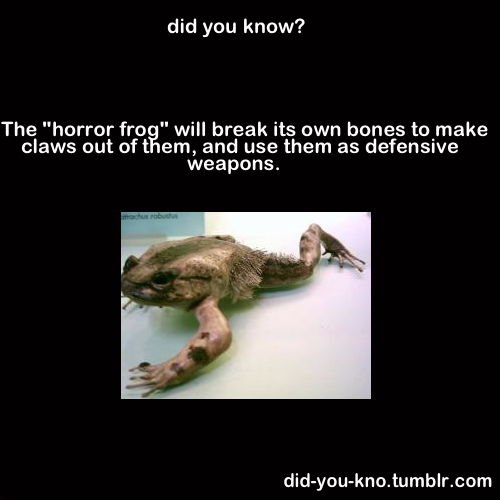 Did आप know?