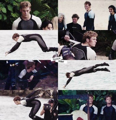 Finnick Odair kertas dinding probably containing a sign and a lamprey entitled Finnick Odair