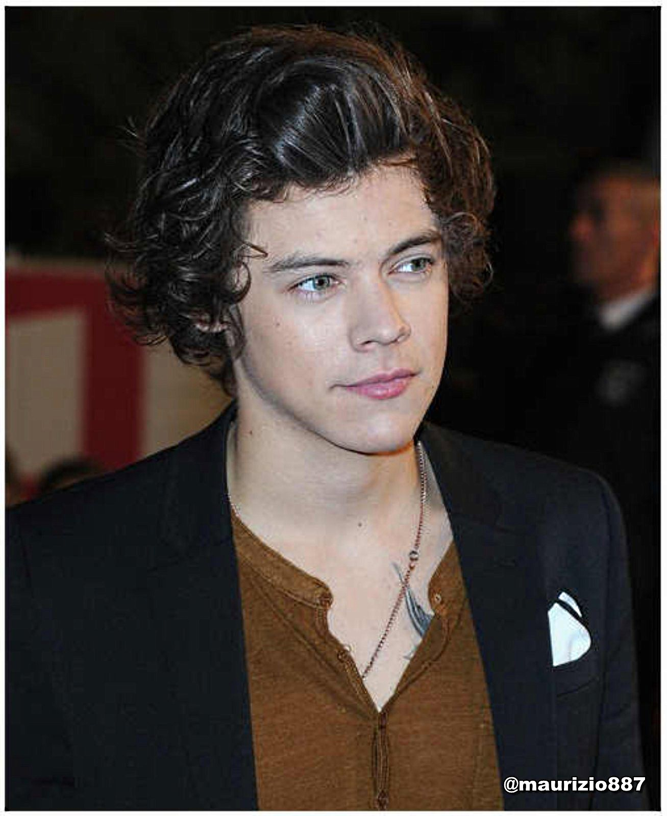 Haven? Or Hell? Fighter or Rebel? Rated M Harry-Styles-NRJ-Music-Awards-2013-one-direction-33437827-1307-1600