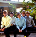 Herman's Hermits - 1960s-music photo