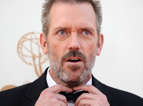 Hugh Laurie Handsome as always