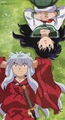 inuyasha GROUP