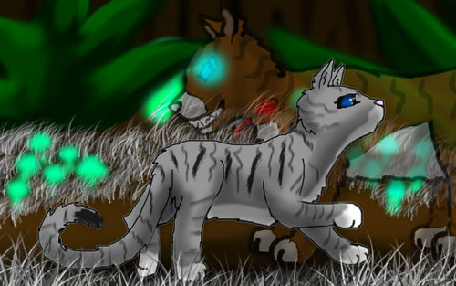 Warriors (Novel Series) Hintergrund called Ivypaw and Hawkfrost