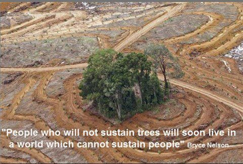 Keep Earth Green Quote