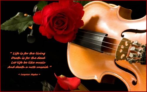Life like música
